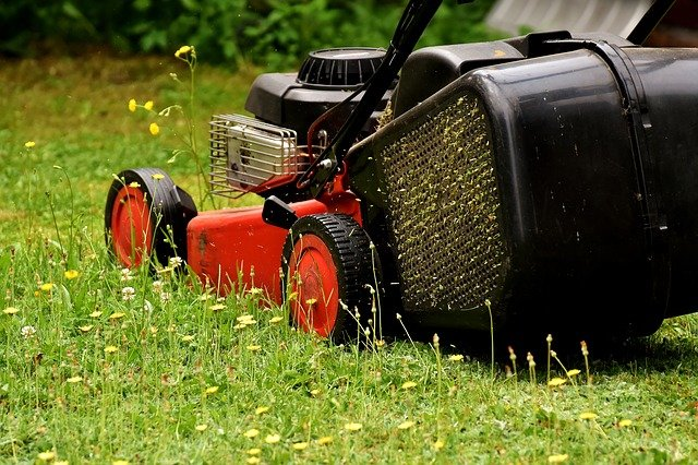 sekačka na trávu.jpg