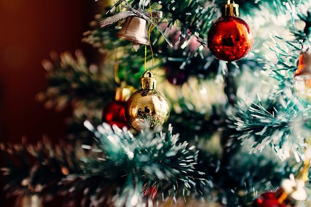 ozdobený stromek.jpg